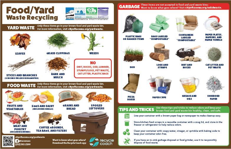 Food Yard Waste Flyer Preview